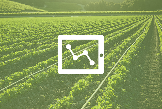 Crop Nutrient (Nitrogen) Decision Support Endpoints