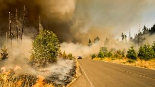 Wildfires 101: How to Tackle Extreme Fire Weather